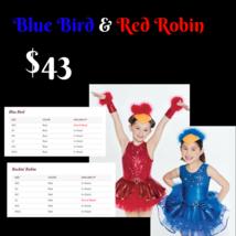 Robins, Blue Jay Halloween Costume Small Child - $43.00