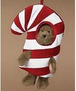 "Boyds Bears ""C.C. Peeker"" BBC Exclusive- Peeker Bear-#918070SM-NWT-2003-... - $29.99"
