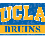 Sports Banner Ucla Bruins Team Logo 3 Ft. X 5 Ft. Flag With Grommets