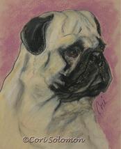 Pug Dog Art Pastel Drawing Solomon - $85.00