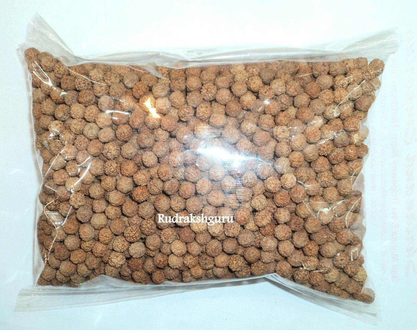 Primary image for 5 Mukhi Rudraksha Loose Beads - {Wholesale Lots}