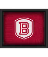Bradley University College Logo Plus Word Clouds - 15 x 18 Framed Print - $49.95