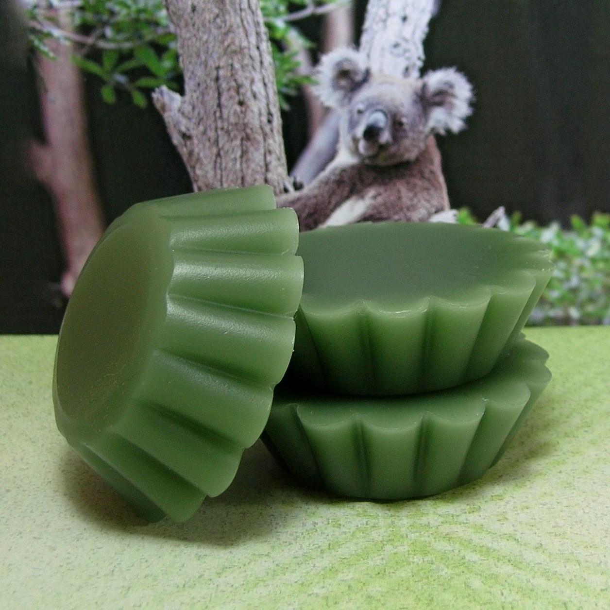 Tart melt eucalyptus 1
