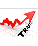 Website Advertising -Deliver MIN 5500-15,500 REAL HUMAN VISITORS to your website - $14.87