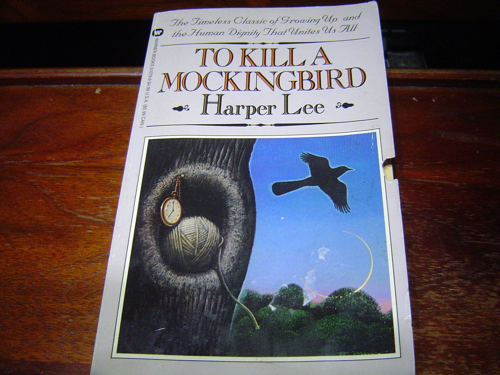 scout in to kill a mockingbird by harper lee Scout is raised in maycomb county, a fictional town in alabama very similar to monroe county where harper lee was raised both scout and lee were advanced students for their ages, learning to read and write before the other students in their classes answered by coco s #17435 on 8/23/2008 3:00 pm i.