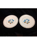Set of 2 Vintage Kensington Blue Flower Plates Staffordshire Ironstone E... - $10.50