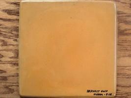 750-01 Harvest Gold Concrete Cement Powder Color 1 lb. Makes Stone Tiles Bricks image 4