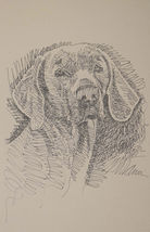 ORIGINAL KLINE WEIMARANER DOG ART WORD PRINT #57 Your dogs name added fr... - $49.95