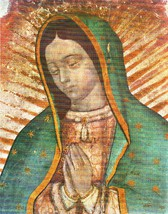 "Our Lady of Guadalupe - Picture 6""x 8"" - ""Bust"" Image"