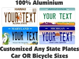 Any State Any Text License Plate Personalized Custom Auto Car Bike Bicyc... - $11.98+