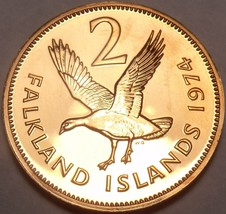 Scarce Proof Falkland Islands 1974 2 Cents~1st Year~23k Minted~Upland Goose~Fr/S - $9.78