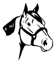 "LARGE 10"" HORSE HEAD Equestrian Cowboy Decal Truck Window Trailer Quarter Horse - $12.00"