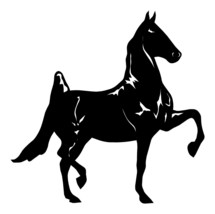 "Large 10"" Saddlebred Horse Gaited Show Decal Vinyl Truck Car Window Trailer - $12.00"