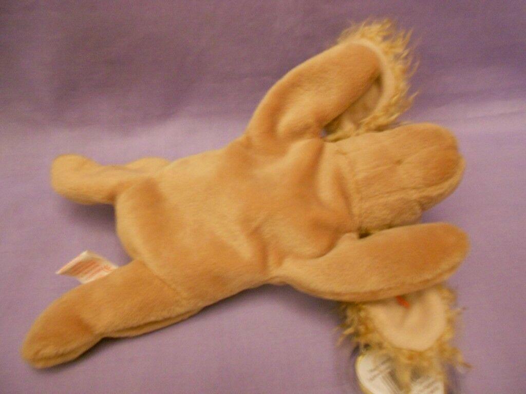 TY Beanie Babies Spunky Cocker Spaniel Tan Dog With Hang Tag Jan. 14, 1997 image 5