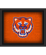 "Sam Houston State Bearkats ""College Logo Plus Word Clouds"" -15 x 18 Fram... - $49.95"