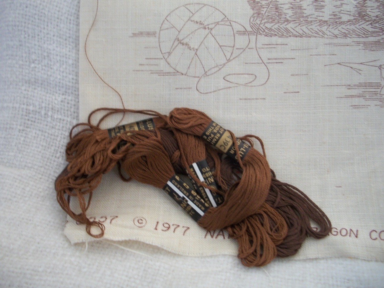 Lost and Found Crewel Embroidery Kit: Comes with Yarn, Canvas & Directions