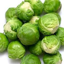 BRUSSELL SPROUT SEEDS 25 Fresh vegetable seed ready to plant in your garden - $1.99