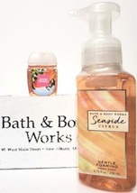 Bath and Body Works Sweet Mint Mimosa Hand Soap & PocketBac Retired HTF - $20.22