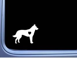 Dutch Shepherd Lil Heart M318 6 inch Sticker Decal schutzhund dog k9 dutchie - $4.49