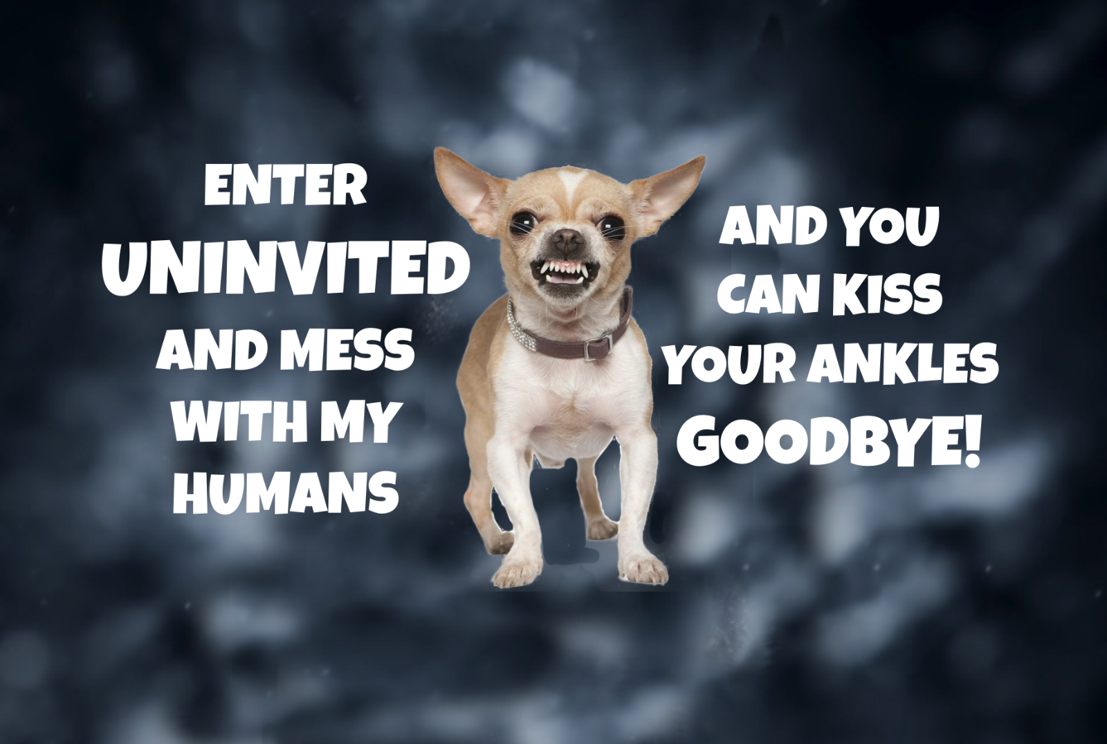 Primary image for 374 CHIHUAHUA KISS YOUR ANKLES GOODBYE GATE FENCE SIGN