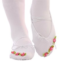 Dance Class Ballet Shoes/Canvas Dance Shoes for Pretty Girl (19CM Length)-White