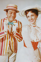 Mary Poppins Dick Van Dyke Julie Andrews smiling portrait 18x24 Poster - $23.99