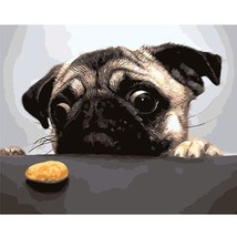 Paint By Number Kit Cute Little Dog Animal Hobby DIY Picture 40x50cm Canvas - $11.20