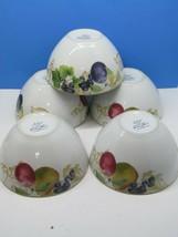 Lenox Garden Mural Soup Cereal Rice Bowls Fruit & Leaves Bundle of 5 - $31.36