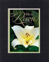 For Easter - Easter Lily. . . 8 x 10 Inches Biblical/Religious Verses set in ... - $9.85