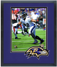 Haloti Ngata 2014 Baltimore Ravens - 11 x 14 Team Logo Matted/Framed Photo - $43.55