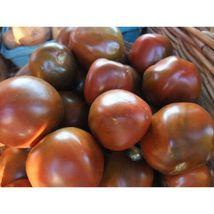 Tomato, Black Prince, Rare Heirloom, 20 Seeds #GRC98 - $12.17