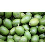 FRESH semi ripe JUNE PLUM-3 lbs - $49.99