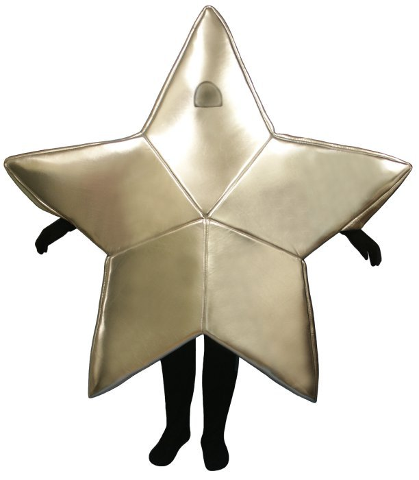 PROFESSIONAL MADE TO ORDER SILVER STAR MASCOT COSTUME
