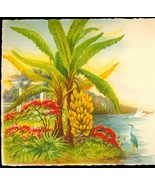 EG Barnhill Photo Print Hand Painted Old Florida Banana Tree Card - $7.00