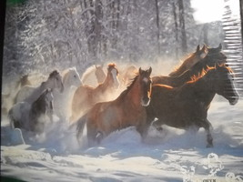 Horses In The Snow Jigsaw Puzzle Art Wolfe 1998 Over 550 Pieces Unused S... - $13.99
