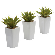 Mini Agave w/ Planter (Set of 3) White - $48.55