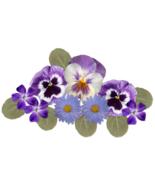Purple Pansies Bouquet Collage-Digital Download... - $4.00