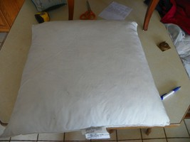 Down Pillow Inserts  20 X 20 - $49.95