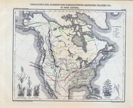 1854 Lange atlas poster antique map shows scat of the whale fishery mammals 17 - $14.85