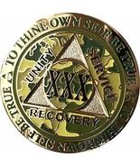 Recoverychip Medallion sample item