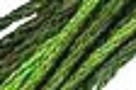 English Ivy (CCT-179) strand hand-dyed cotton floss Classic Colorworks - $2.15