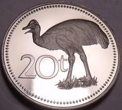 Rare Cameo Proof Papua New Guinea 1981 20 Toea~Bennett's Cassowary~10k Minted~FS - $15.43
