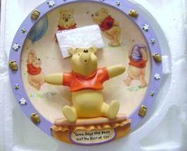 Winnie The Pooh 3D Plate - $10.00