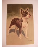 Vintage Victorian Color Postcard Boston Terrier Artist Signed D Carr unc... - $49.00