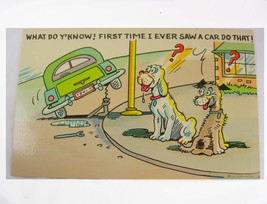 Vintage Dog humor postcard Curt teich Old car comedy photocrom whimsical - $45.00