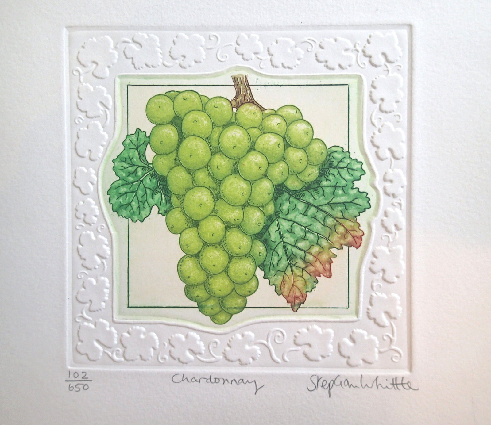 "Stephen Whittle ""Chardonnay "" S/N Etching Embossed Border Grapes on vine LTD"