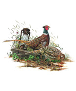 Ring necked pheasant cross stitch pattern thumbtall