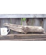 DRIFTWOOD FOR AQUARIUM CRAFTS REPTILES WALL ART FROM ROCKY MOUNTAINS USA... - $17.95