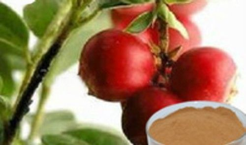 Primary image for Camu Camu ORGANIC RAW powder 140 Grams Detox  healthy skin heart eyes Lots