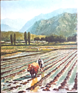 Original Oil Painting Bakjo Man Plowing Fields Reseller Impressionism La... - $29.99